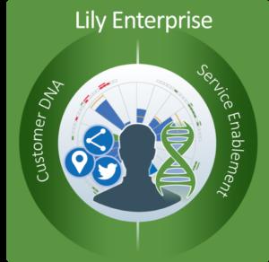 Lily Enterprise