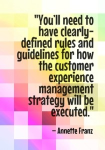 """You'll need to have clearly-defined rules and guidelines for how the customer experience management strategy will be executed."" - Annette Franz"