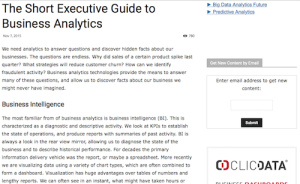 The Short Executive Guide to Business Analytics