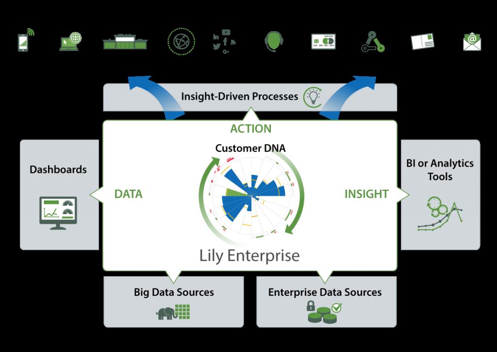 Lily-Enterprise-DAI-1200-x-850-web
