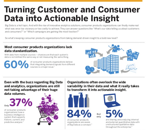 Turning Customer and Consumer Data into Actionable Insigh