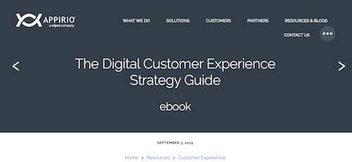 50 Best Customer Experience Strategy Resources Articles Guides More NGDATA